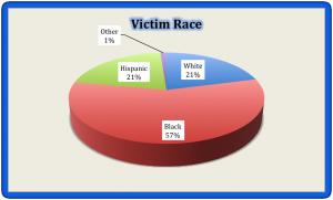 Victim Race 2